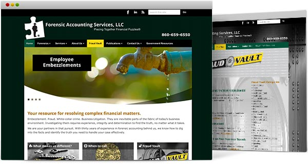 CT Wordpress design, Forensic Accounting Services